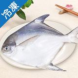 嚴選新鮮白鯧300~400g/尾