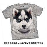 『摩達客』(預購)美國進口【The Mountain】自然純棉系列 小哈士奇犬 設計T恤 (兒童尺寸)