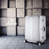 Rowana 星鑽冰糖金屬平框避震行李箱 29吋(時尚銀)