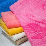 【法式寢飾花季】優雅生活-100%純棉天鵝剪絨緹花枕巾(2入1付)x2件組