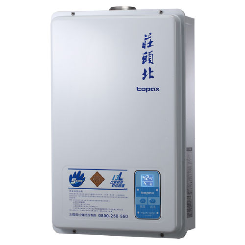 莊頭北TH-7132FE 屋內大廈型數位恆溫強制排氣熱水器13L