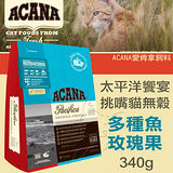 【ACANA愛肯拿 太平洋饗宴】挑嘴貓無穀 多種魚玫瑰果(340g)
