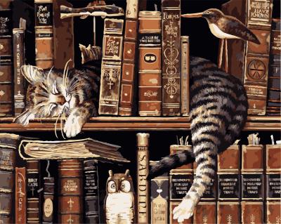 ArtLife藝術生活【89557】書架上的貓_DIY 數字 油畫 彩繪 40*50cm