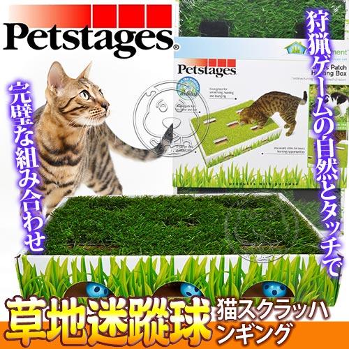 美國petstages~708戶外模擬狩獵草地迷蹤球貓玩具 個