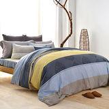 美夢元素 索思 天鵝絨雙人加大四件式 全鋪棉兩用被床包組