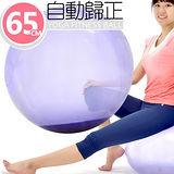26吋不倒翁顆粒韻律球C109-5211 65cm瑜珈球抗力球彈力球.健身球彼拉提斯球復健球體操球大球操.運動用品健身器材