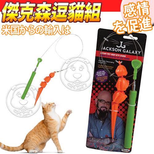 美國Petmate~傑克森寵物咪貓超仿真爬行逗貓組 組