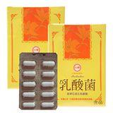 台糖 乳酸菌x2盒