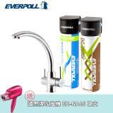EVERPOLL 愛惠浦科技 不鏽鋼三用龍頭+全效能淨水組 (H-318+DCP-3000)