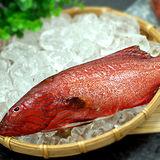【築地一番鮮】峇里島野生紅鰷石斑魚1條(350±50g/條)-任選