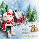 紅色斗篷-Le Sucre砂糖兔 法國兔子布偶抱枕 娃娃禮物 45CM
