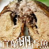 【築地一番鮮】宜蘭特選卵香魚5尾(200g/尾)-任選