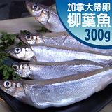 【築地一番鮮】加拿大帶卵柳葉魚1包(約300g/包)-任選