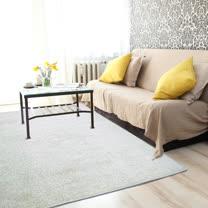 范登伯格<br>高質感素面地毯-米色