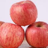 【果之蔬】 美國富士蘋果(20kg±10%/約125~138顆)