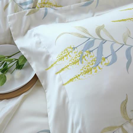 《HOYA H Series悠然自得》特大四件式頂級500織匹馬棉被套床包組-贈莫代爾針織夏被
