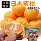 【果之蔬】嚴選日本進口無籽蜜柑(1袋/每袋約500g±10%)