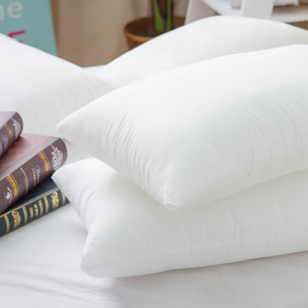 台灣製水洗 防蹣抗菌棉枕2入