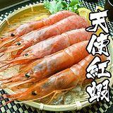 海鮮王 阿根廷超大尾天使紅蝦 *2包組 (10隻/600g/包)