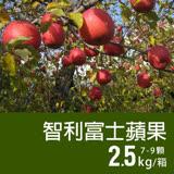 【築地一番鮮】特大智利富士蘋果1盒(2.5kg/禮盒/7-9顆)免運組