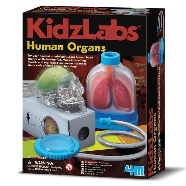 【4M】科學探索系列 - 器官的奧秘 Human Organs 00-03374