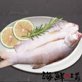 【海鮮主義】午仔魚一夜干(200g/尾)