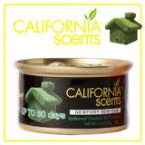 【御香坊California Scents】新車CAN022 淨香草