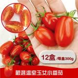 【果之蔬】高山聖女小蕃茄 8盒 (600g/盒±10%含盒重)