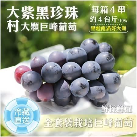 【果農直配】大村特大顆巨峰香檳葡萄X4箱(每箱4串入/約4斤±10%含箱重)