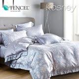 《KOSNEY 暗香疏影藍》雙人100%天絲TENCEL四件式兩用被床包組
