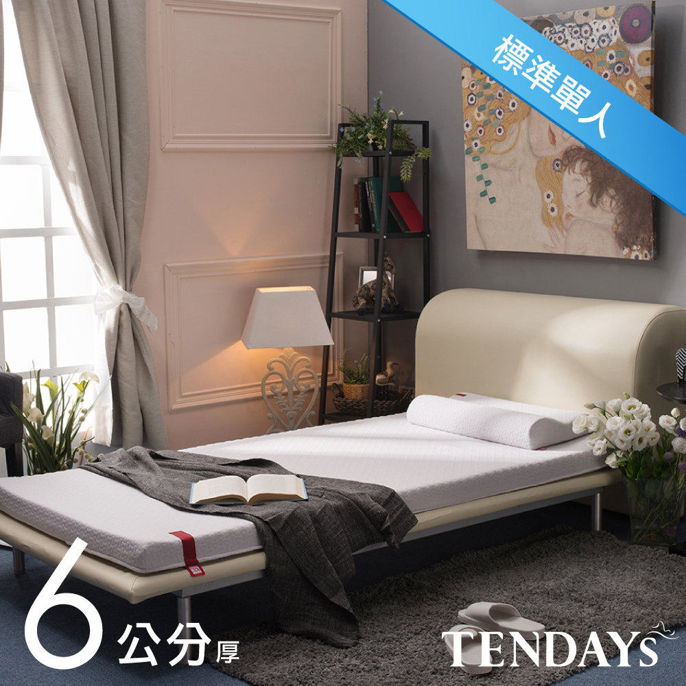 【TENDAYS】柔織舒壓床墊(標準單人3尺 6cm厚記憶床)