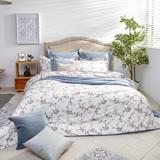BBL海薇100%精梳棉雙人兩用被床組