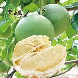 普明園. 台南麻豆40年大白柚 (5台斤/約2-3顆/箱,共2箱)
