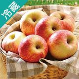 紐西蘭皇后富士蘋果 120/12 粒