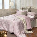 BBL克莉斯朵100%精梳棉雙人兩用被床組