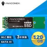ANACOMDA巨蟒 侵略入門款 A1 120GB M.2 2280 SATA SSD 固態硬碟