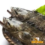 (任選)【極鮮配】現撈急凍 台灣鮮嫩石斑魚 500G~600G/隻