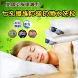 HO KANG 美國英威達專利 七孔纖維抗菌水洗枕˙1入