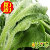 (買1送1)鮮採家 綠色溫室水晶冰菜1盒入(單盒100g±10%)