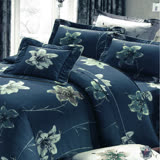 Carolan綻放-藍 雙人五件式精梳棉兩用被床罩組