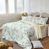 BBL娜塔莎100%精梳棉.印花雙人兩用被床包組