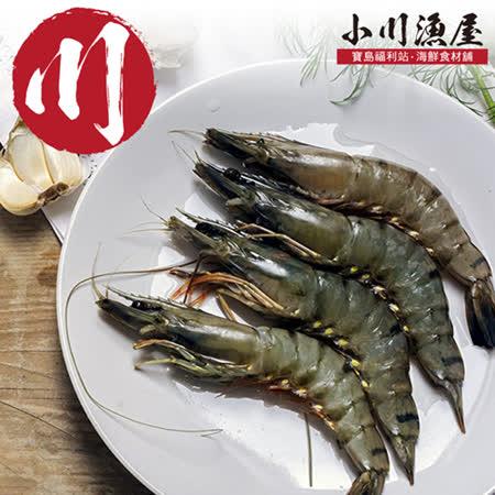 小川漁屋 活凍熱帶大草蝦48尾