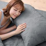 (任)J-bedtime【蝶舞飛揚】雙人絕美壓紋X防汙防塵床包式保潔墊(淺灰蝶)