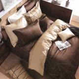Carolan品味紳士咖啡 雙人五件式精梳棉兩用被床罩組