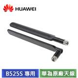華為 HUAWEI B525S-65A 專用天線 (黑)