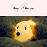 papa puppy 呆呆汪 小狗伴睡燈/夜燈/造型燈/觸控燈 療鬱系 舒壓 USB充電 禮物