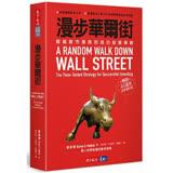漫步華爾街:超越股市漲跌的成功投資策略