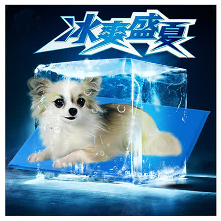 寵物愛家 寵物涼爽冰墊春夏專用