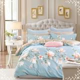 美夢元素 台製-精梳棉-兩用被床包組-神秘花園 (單人)