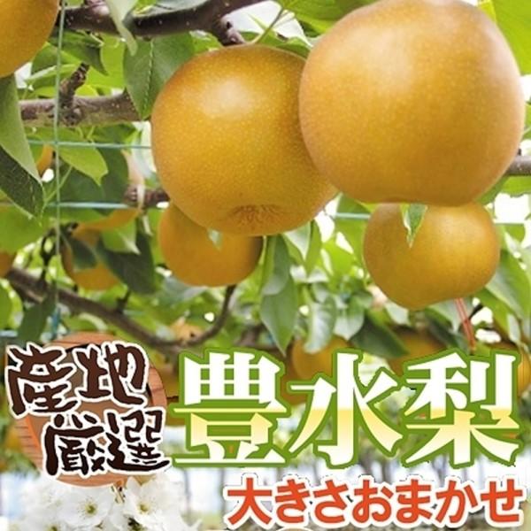 果之蔬12A東勢特選 高山牛奶豐水梨(6入)